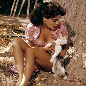 Picture tagged with: Playboy, Brunette, Cat, Celebrity - Star, Marilyn Hanold, Nature, Vintage