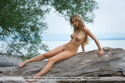 Picture tagged with: Blonde, Femjoy, Boobs, Nature