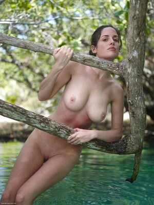 Picture tagged with: Hegre Art, Brunette, Boobs, Nature