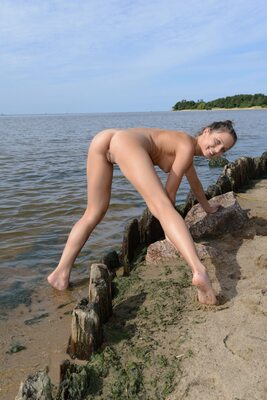 Picture tagged with: MET Art, Brunette, Beach, Foxy Di - Nensi B, Senari
