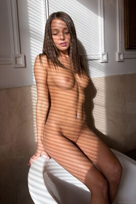 Picture tagged with: Brunette, Foxy Di - Nensi B, MET Art, Studna